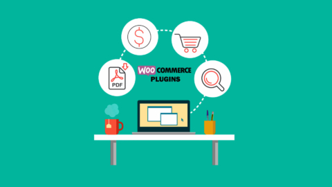 Wordpress Woocommerce Plugins Reviewed: Which Ones are Worth Having?
