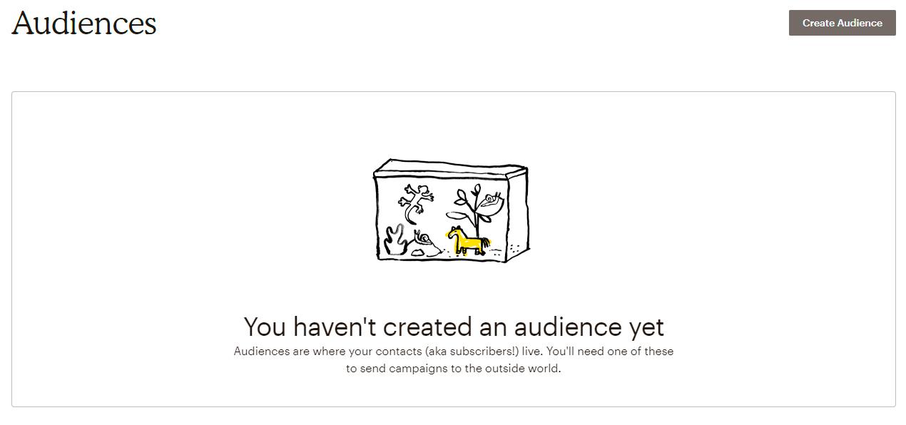 Create Audience